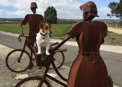 Brewster - come and meet our cute puppy sitting in rail trail monument bike basket